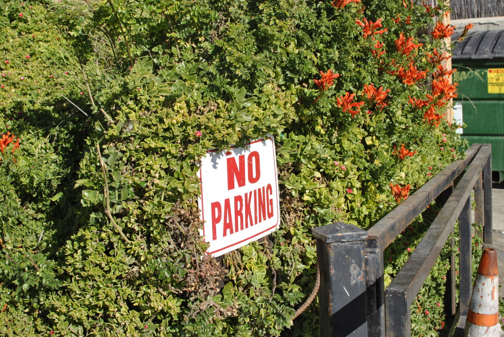 pretty no parking sign